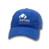 Eastern Illinois University Royal Turret Hat