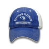 Eastern Illinois University Panther Logo Royal Snapback