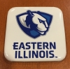 Cover Image for Eastern Illinois 95' Henley