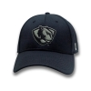 Image for Panther Logo Hat
