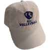 Cover Image for EIU Volleyball PL Decal