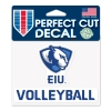 Cover Image for Blue Panther Logo Volleyball Hat
