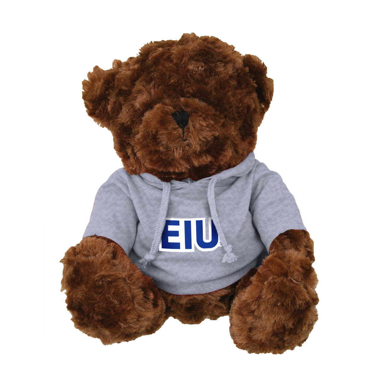 Image For BROWN BEAR EIU HOODIE