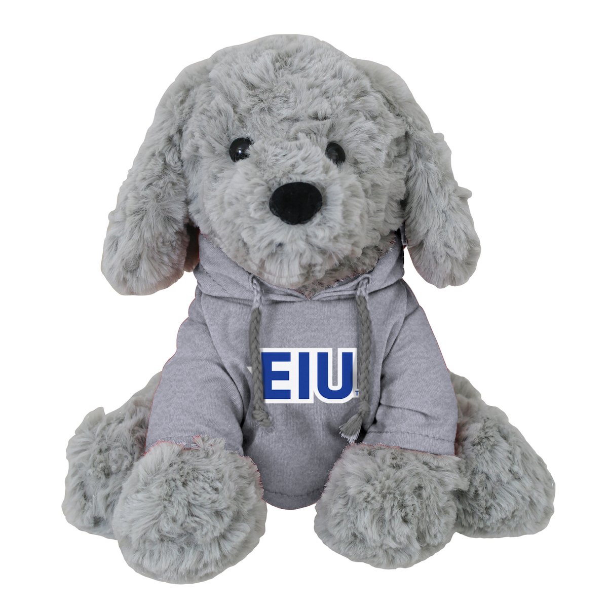 Image For GRAY DOG EIU HOODIE
